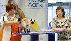 16-17 августа 2014г.  -  выставка по системе WCF  г. Екатеринбург