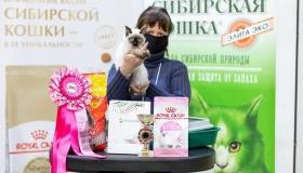 Международная выставка кошек 7 – 8 ноября Екатеринбург